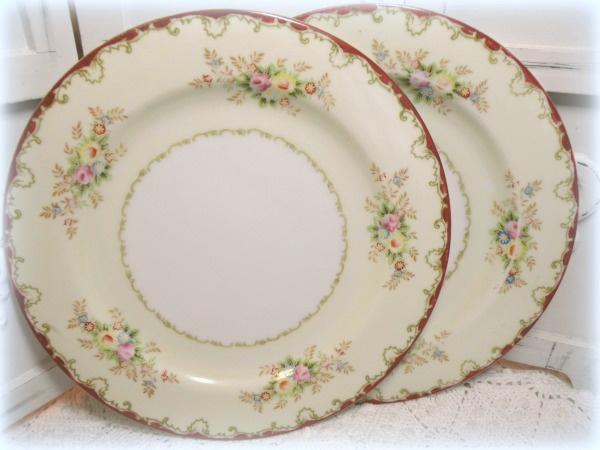 "Vintage Empress china hand painted  two 10"" plates EMP 131"