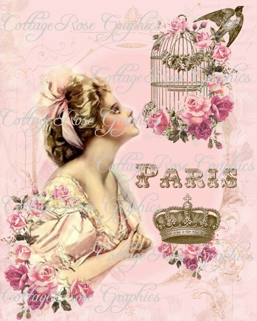Pink Paris Dreams Art print